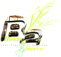 B2Serve - We Deliver to Make Web More Than Just Easy